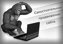 Раскрутка сайтов: самые эффективные методы