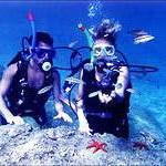 Все о подводном туризме. Ступени мастерства дайвинга